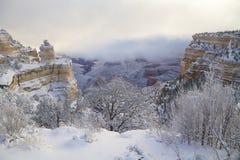在大峡谷的冬天风景 免版税库存照片