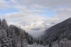 在雪盖的奥地利人有山脉的Stubai阿尔卑斯全景和树和蓝天和云彩在冬天 图库摄影