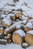 在雪盖的木日志 免版税库存图片