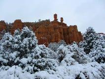 在雪盖的红色峡谷,犹他 免版税库存图片