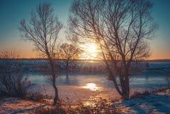 在雪自然的冬天风景 免版税库存图片