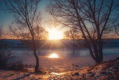 在雪自然的冬天风景 免版税库存照片