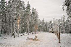 在雪谷的爬犁在芬兰拉普兰在冬天 免版税库存图片