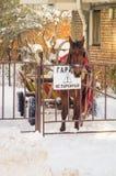 在雪车库的马在波摩莱,保加利亚 库存照片