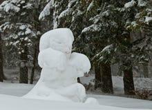 在雪附近的熊森林 免版税库存图片