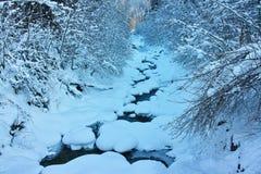 在雪风景的小河 免版税库存图片
