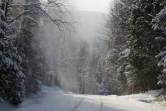 在雪风暴下的冬天路 图库摄影