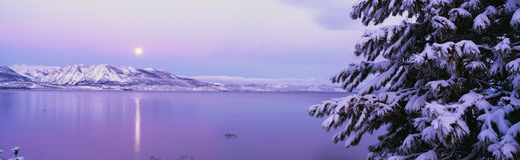 在雪风暴以后的Tahoe湖 免版税图库摄影