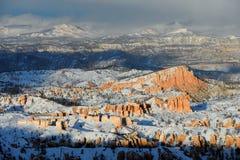 在雪风暴的bryce峡谷 免版税库存照片