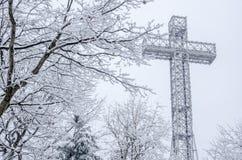 在雪风暴期间的蒙特利尔Mont皇家十字架 免版税库存图片