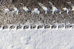 在雪,冬天的一条轨道 免版税图库摄影