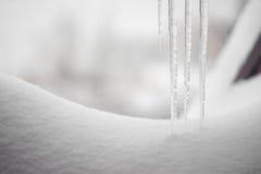 在雪结冰的冰柱 图库摄影