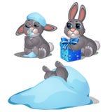 在雪结冰的嬉戏的野兔,三个图象 库存图片