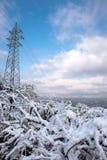 在雪以后的冬天风景 免版税库存照片