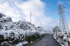 在雪以后的冬天风景 库存图片