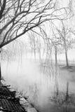 在雪以后的雾 免版税图库摄影