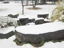 在雪以后 免版税库存照片