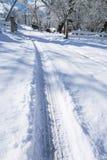在雪01的轮胎轨道 免版税库存照片