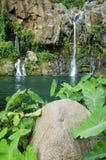 在雷乌尼翁冰岛,法国的列斯Cormorans瀑布 库存图片