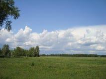 在雷云背景的树在河附近的 图库摄影