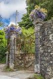 在雷加莱拉宫附近的古老门有紫藤的 免版税库存图片