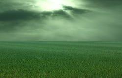 在雷暴的草甸 免版税库存照片