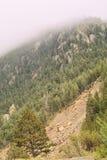 在雾下的山崩 库存图片
