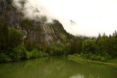 在雾下的绿色水湖 免版税库存照片