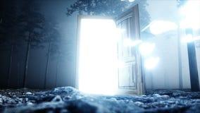 在雾夜森林光门户门的发光的蝴蝶 Mistic和不可思议的概念 现实4K动画 股票录像