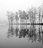 在雾湖之上 免版税库存照片