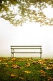 在雾的一条长凳 免版税库存图片