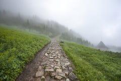 在雾的供徒步旅行的小道 免版税库存照片