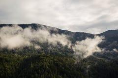 在雾的山 免版税库存图片