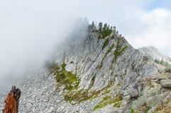 在雾的岩石 图库摄影