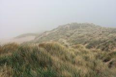 在雾的沙丘 免版税库存图片