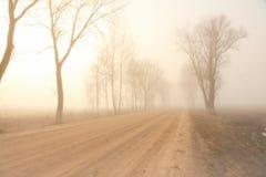 在雾的神秘的路 库存图片