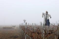 在雾的稻草人 免版税库存照片