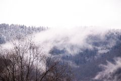?? 在雾的索契爱德乐山 图库摄影