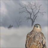 在雾的老鹰 免版税图库摄影