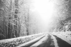 在雾的路 神奇方式 斯诺伊山路 集成电路的风险 库存图片