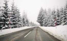 在雾的路 神奇方式 斯诺伊山路 集成电路的风险 免版税库存照片