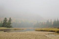 在雾的阿科底亚国家公园蜂箱 免版税库存照片