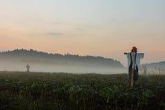 在雾的稻草人 库存图片