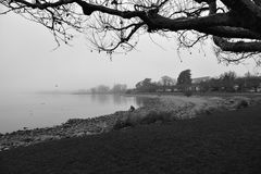 在雾的Bodensee 免版税图库摄影