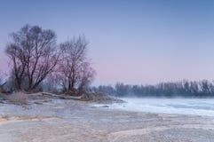 在雾盖的一条结冰的河的狂放的河岸在黄昏期间 免版税库存图片