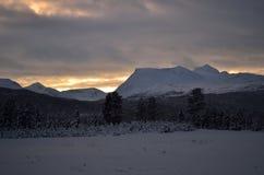 在霜冰的桃红色黎明天空和多雪的冬天森林和领域 免版税库存图片