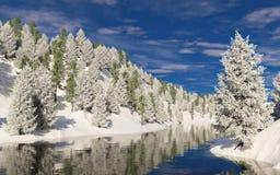 在霜的树在河沿岸航行 库存图片
