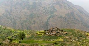 在露台的绿色领域中的小村庄 免版税库存图片