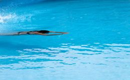 在露天游泳水池的妇女游泳 免版税库存照片