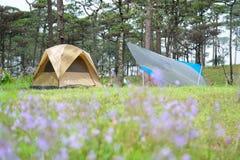 在露营地的帐篷 免版税图库摄影